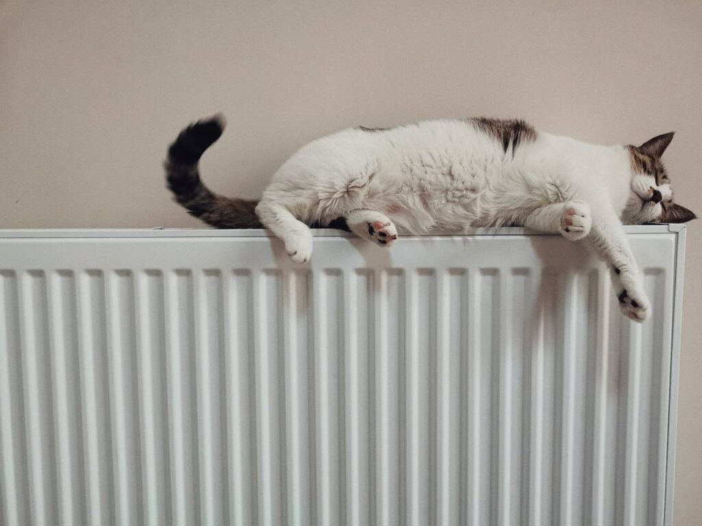 Dorchester Central Heating Engineer